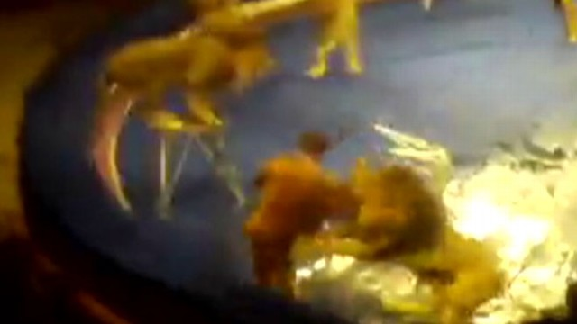 VIDEO: Lions attacked a tamer during a performance in Lviv, Ukraine in 2010.