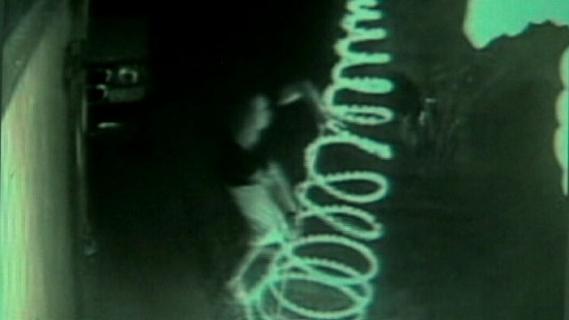 VIDEO: Cameras catch vandals trashing holiday decorations across the country.