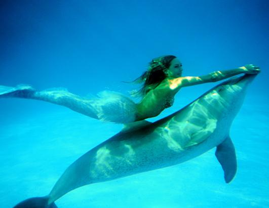 Real Sea Mermaids http://get-my-wallpapers.blogspot.com/2011/11/watch-reallife-mermaids-swim-with-sea.html