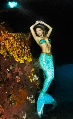 Real-Life Mermaids Seek Beauty of Deep