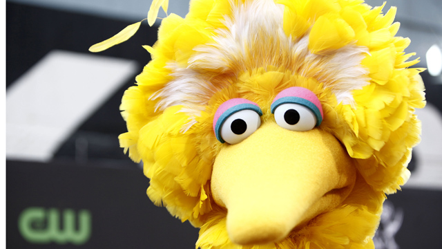 PHOTO: Big Bird, of the childrens television show Sesame Street, was a big player in last nights debate.