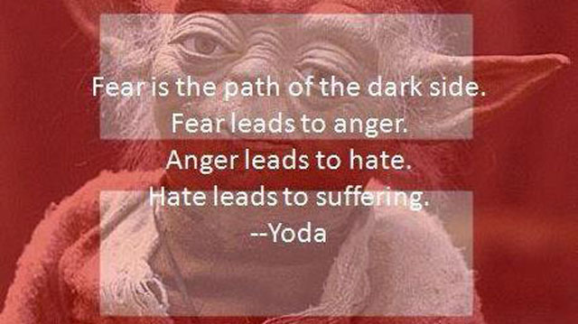 PHOTO:Yoda knows where he stands on the marriage debate.