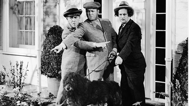 PHOTO: The Three Stooges experience some confusion while walking their dog in a still from an unidentified film. L-R: American actors Moe Howard (1897 - 1975), Curly Howard (1903 - 1952), and Larry Fine (1902 - 1975).