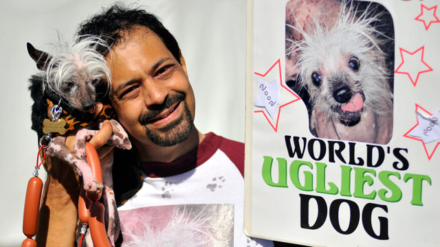 PHOTO: Rascal kicks off his campaign for World's Ugliest Dog.