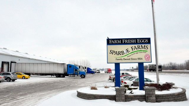 PHOTO: Dozens of federal homeland security agents descended on Sparboe Farms in Litchfield, Minn. on Jan. 8, 2013, as part of what authorities called a
