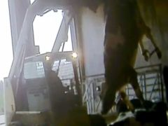 PHOTO: An undercover investigation by the animal rights group Mercy for Animals shows alleged animal abuse by a dairy farm in Wisconsin.