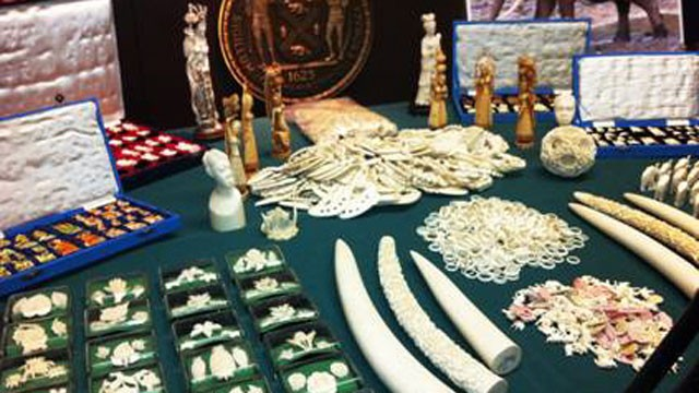 PHOTO: More than 70 boxes of endangered, illegal ivory goods seized by the Manhattan district attorney were put on display, July 12, 2012.