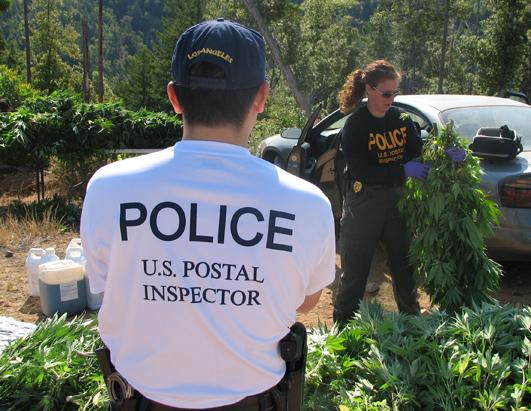 How Marijuana Is Sent Through the U.S. Mail