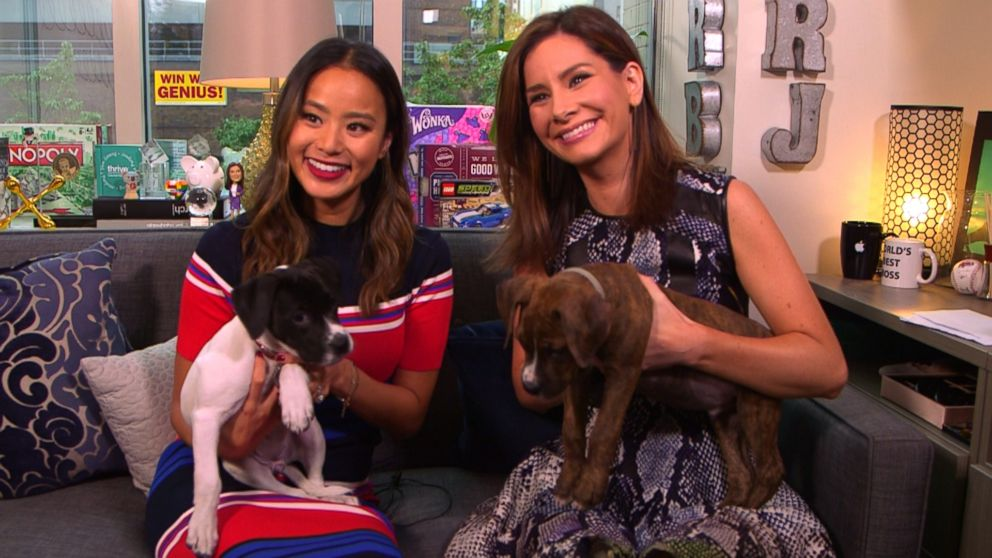 VIDEO: Jamie Chung on Real Biz with Rebecca Jarvis