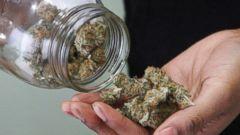 PHOTO: Alaska Cannabis Club CEO Charlo Greene is pictured at the medical marijuana dispensary in Anchorage, Alaska on Feb. 20, 2015.