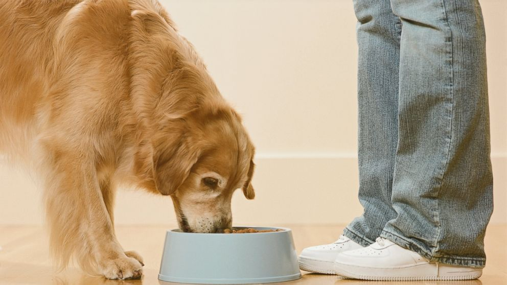 PHOTO: Mars is spending $2.9 billion to beef up its line of premium pet foods. Does Fido care?