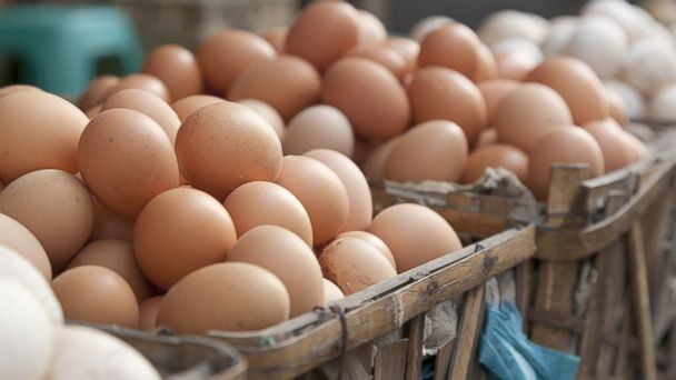 PHOTO: A semi rig containing 180,000 eggs was reported stolen from behind a 7-11 store.