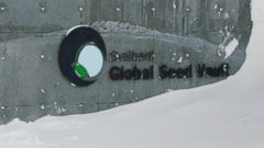 PHOTO: A guard stands watch outside the Global Seed Vault