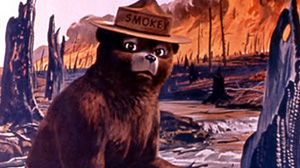 PHOTO This poster from the U.S. Agriculture Dept. web site shows Smokey Bear in a poster.