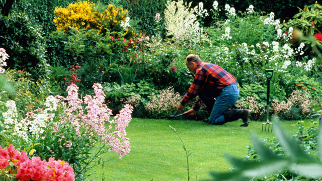 PHOTO: Check out GMAs landscaping tips from the experts that can help increase value to your home.