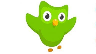 PHOTO: A view of the website Duolingo.com.