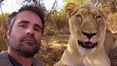 "PHOTO: Kevin Richardson, known as the ""Lion Whisperer,"" and a GoPro camera get up close and personal with lions and other animals. The video has had more than 15.8 million views in just six months."