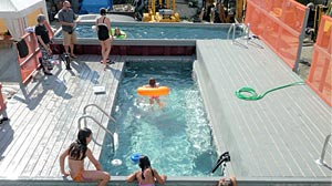 Photo: Dumpster Pools Create Urban Oases: Vacant Lots Become Coolest Spots in Town