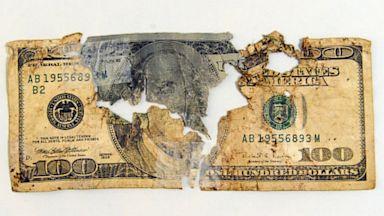 PHOTO: Mangled $100 bill