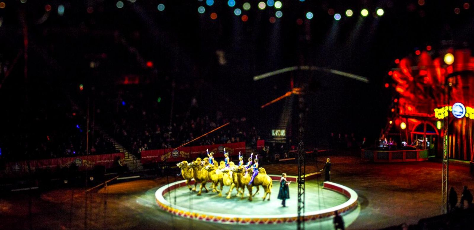 VIDEO: Ringling Bros. and Barnum & Bailey's Circus Xtreme: Tiny Edition