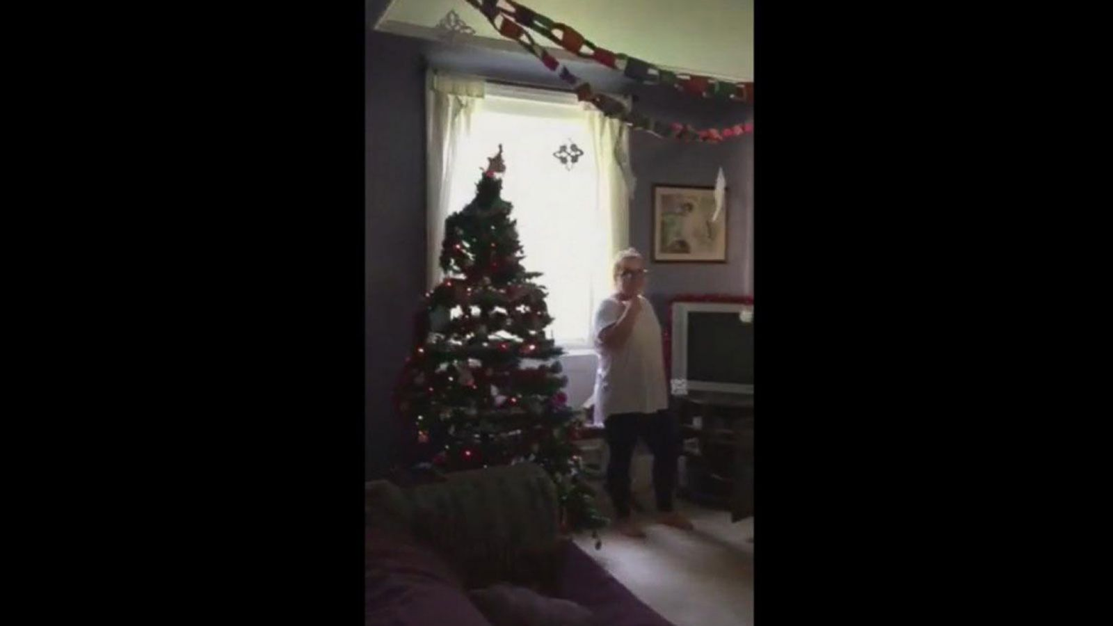 VIDEO: Family Celebrates Christmas Early for Dying Dog