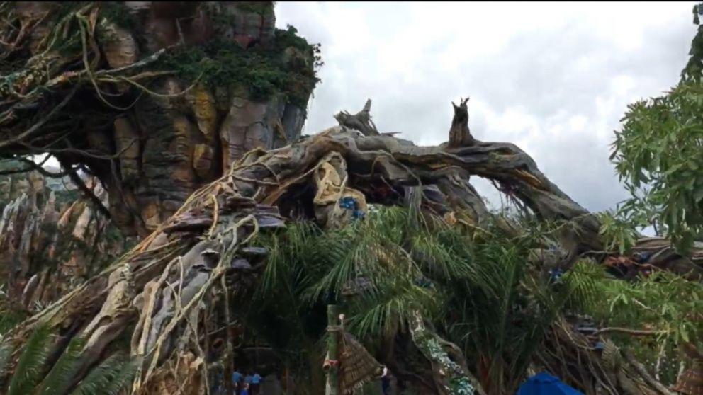VIDEO: Disney Imagineer on Pandora -The World of Avatar