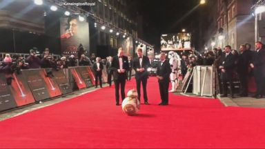 'VIDEO: The princes are rumored to have made a cameo in the new film.' from the web at 'http://a.abcnews.com/images/Entertainment/171212_atm_royals_star_wars_16x9_384.jpg'