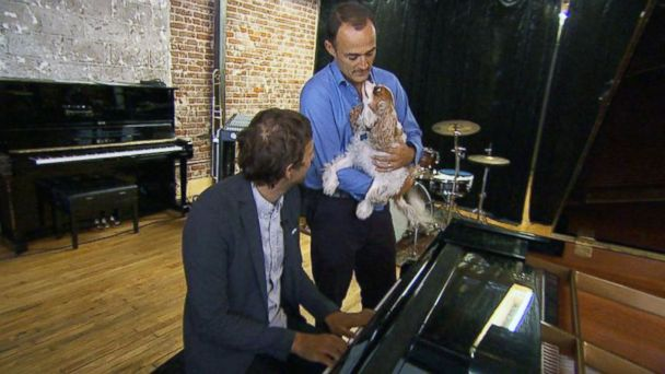 ABC wn watt 2 mar 140821 16x9 608 Pianist for fun. Band Shares His Musical Gift With Dogs