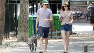 Newlyweds Adam Brody and Leighton Meester Walk Their Dogs