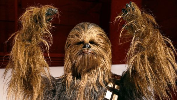 PHOTO: A yak hair and mohair costume of the Wookiee Chewbacca is displayed as part of an exhibit on the costumes of Star Wars at Seattle's EMP Museum, Jan. 29, 2015.