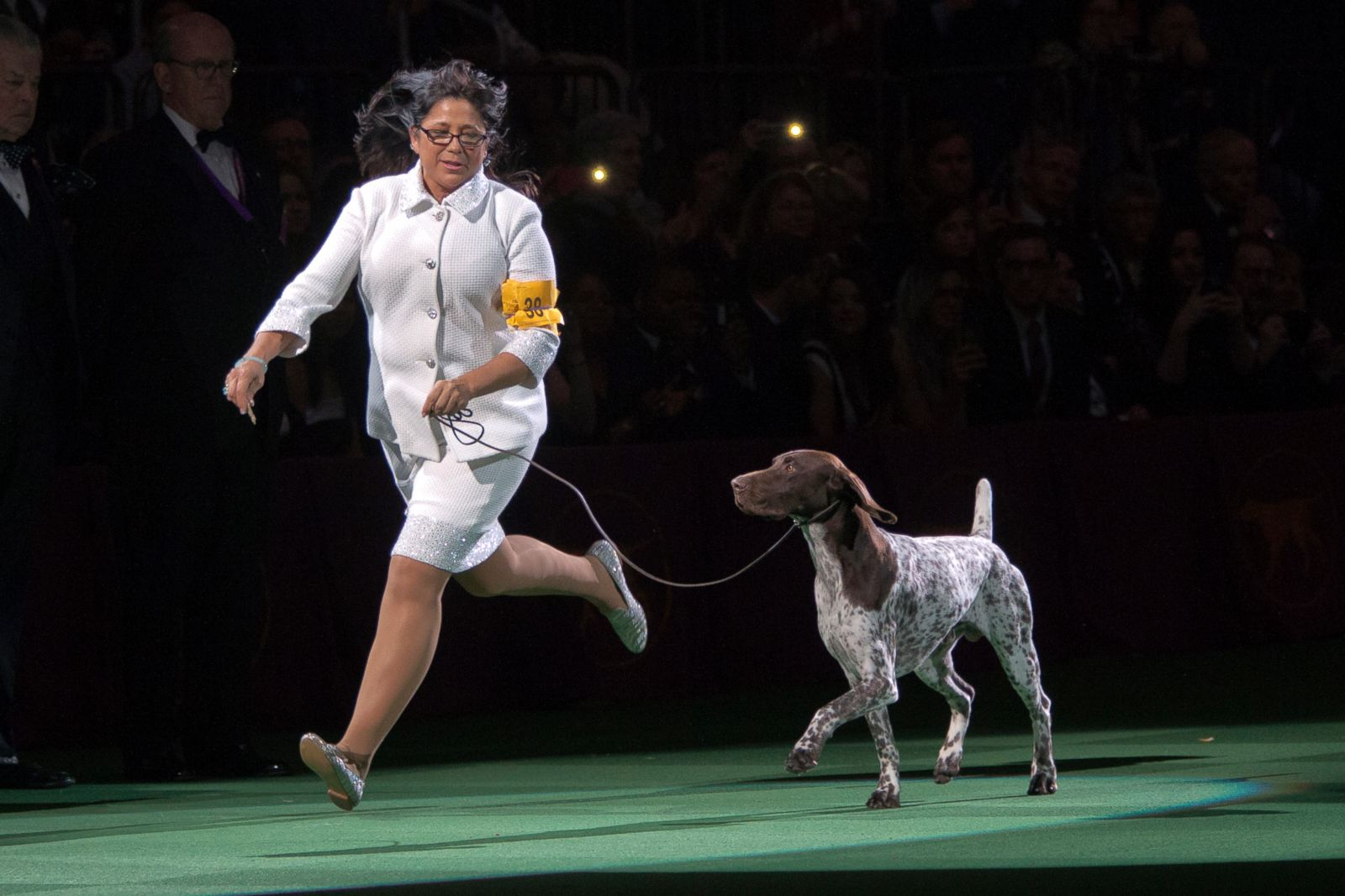 Westminster Dog Show Winners By Breed