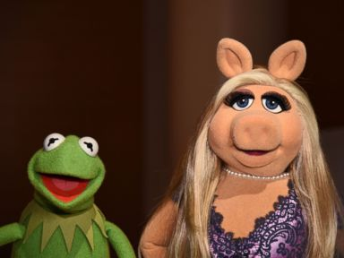 PHOTO: Kermit the Frog and Miss Piggy pose during Brooklyn Museums Sackler Center First Awards at Brooklyn Museum, June 4, 2015, in New York.