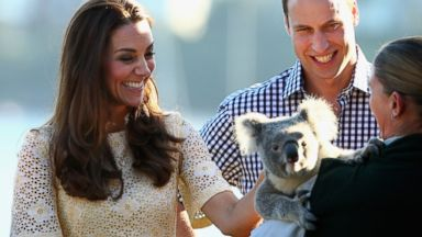 PHOTO: Prince William and Kate Middleton Meet a Koala