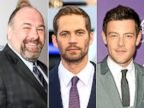 James Gandolfini, Paul Walker and Cory Monteith have all passed away in 2013.