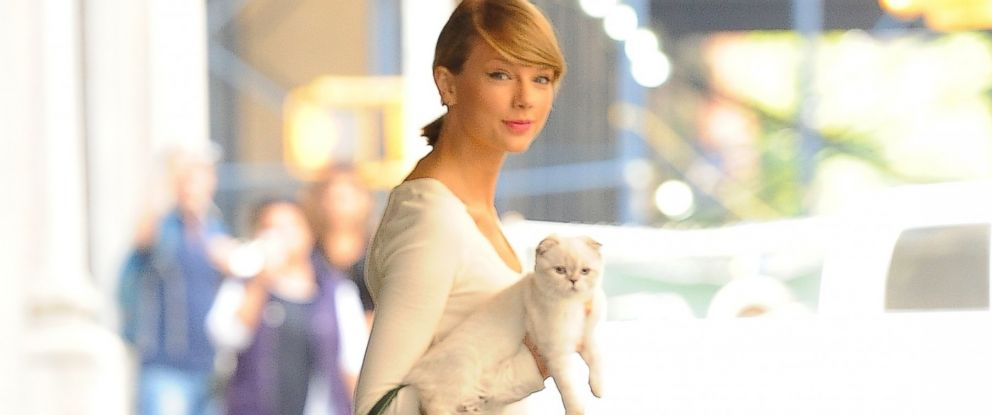 PHOTO: Taylor Swift and her kitten, Olivia Benson, are seen on Sept. 16, 2014 in New York City.