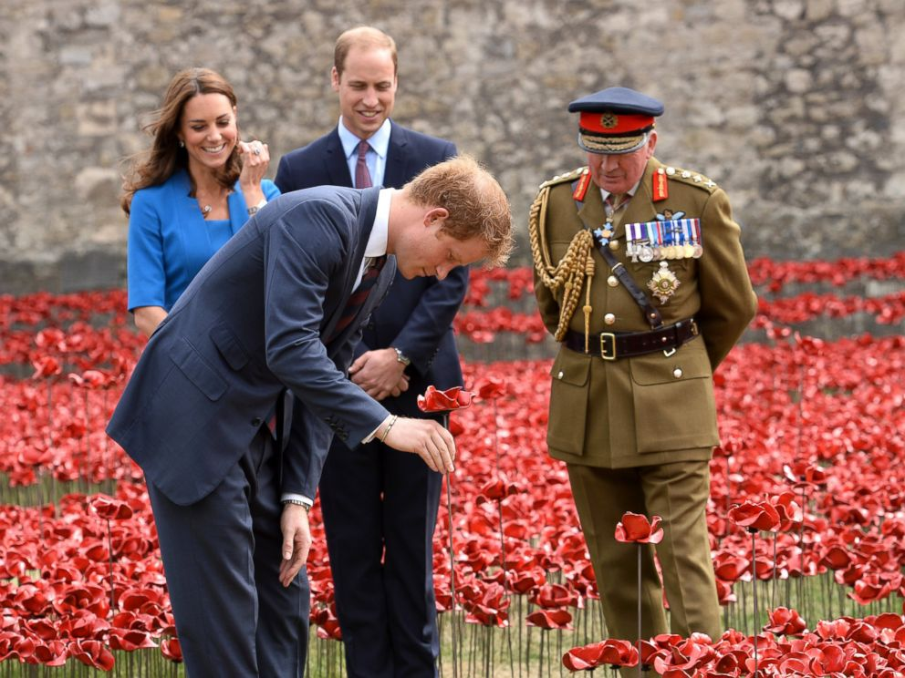 PHOTO: Prince Harry, Catherine, Duchess of Cambridge and Prince William, Duke of Cambridge visit the Tower of Londons Blood Swept Lands and Seas of Red poppy installation in London, England, Aug. 5, 2014.