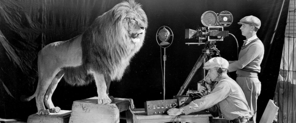 PHOTO: A cameraman and a sound technician record the roar of Leo the Lion for MGMs famous movie logo.