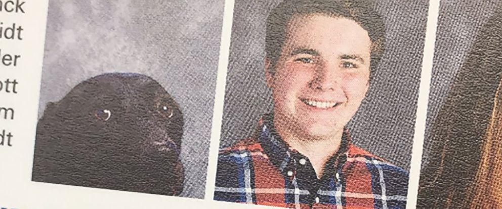 "PHOTO: Andrew ""AJ"" Schalk, a junior at Stafford High School in Fredericksburg, Virginia, attends school with his service dog, Alpha."