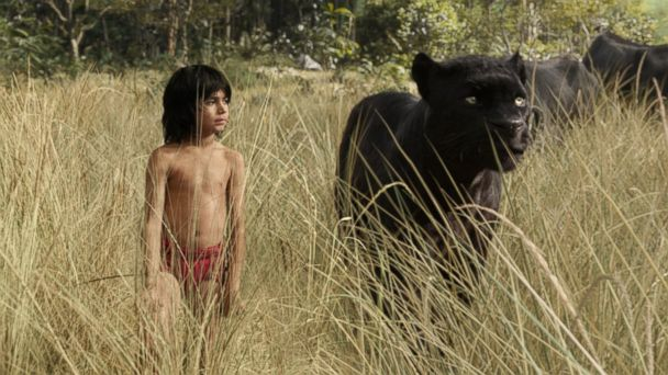 PHOTO: Neel Sethi in