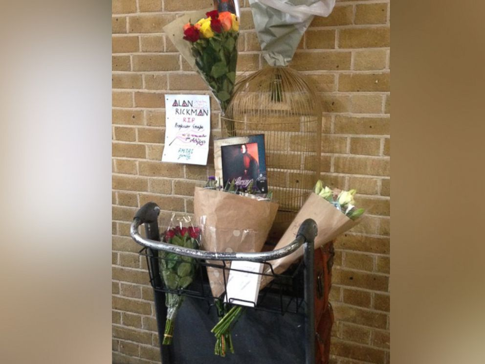 PHOTO: Harry Potter fans pay tribute to actor Alan Rickman at the Platform 9 3/4 in Kings Cross Station in London.
