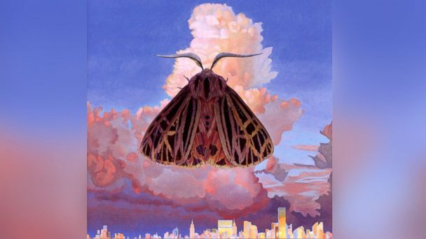 "PHOTO: Chairlift - ""Moth"""