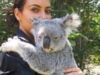 Kim Kardashian Cuddles with a Koala