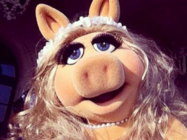 Photos: Say Cheese! The Muppets Share Selfies