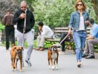 Casper Smart and Jennifer Lopez Step Out With Their Dogs
