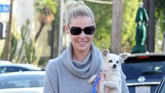 Katherine Heigl Gives Her Dog a Lift