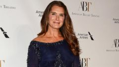 Brooke Shields Sports a Blue Dress on the Red Carpet