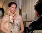 "PHOTO: Ashley Judd, who has reemerged in a new role a new television series on ABC called ""Missing,"" opened up about dealing with her depression, with her registered ""psychological support"" dog named Shug at her side."