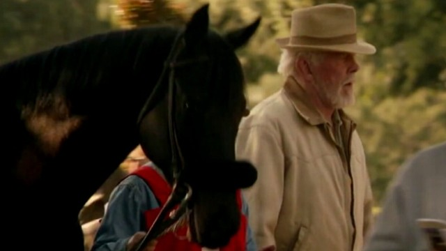VIDEO: HBO shuts down production involving horses while accident is investigated.