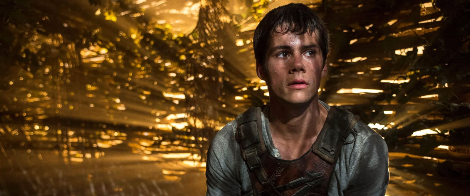 "PHOTO: In this image released by 20th Century Fox, Dylan OBrien appears in a scene from ""The Maze Runner."""
