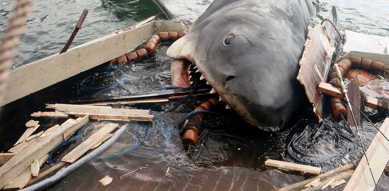 PHOTO: Shark from the film Jaws